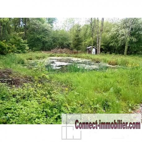 conchil terrain avec plan d eau 2000m²